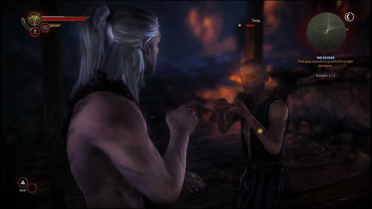 The Witcher 2 Fistfighting