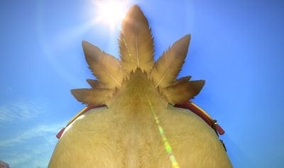 Fat Chocobo Shows Off Its Final Fantasy XIV PS4 Booty