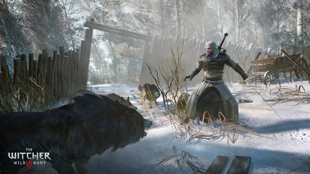 The Witcher 3: Wild Hunt - Snow 02