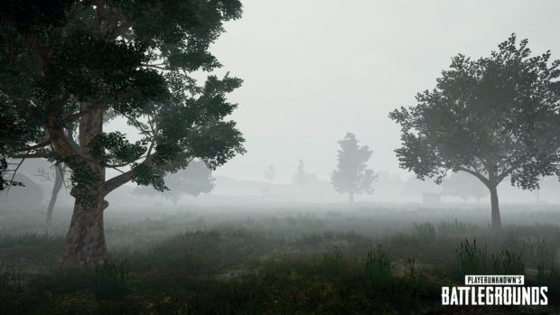 PUBGs Fog Weather Effect