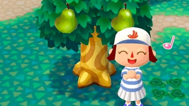Animal Crossing: Pocket Camp Collectibles Guide