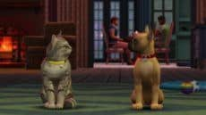 Sims 4 Cats & Dogs Guide