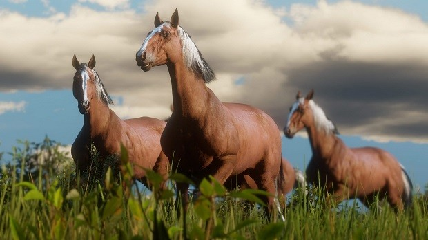 Red Dead Redemption 2 Horses Guide