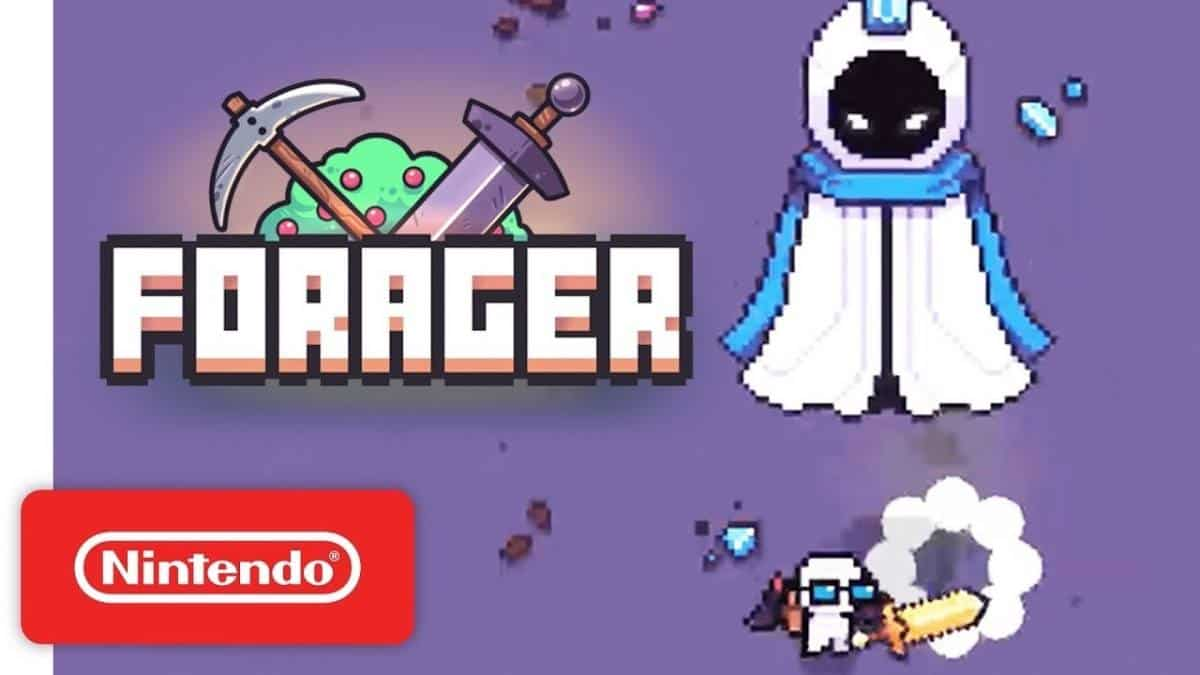 Forager Beginners Guide