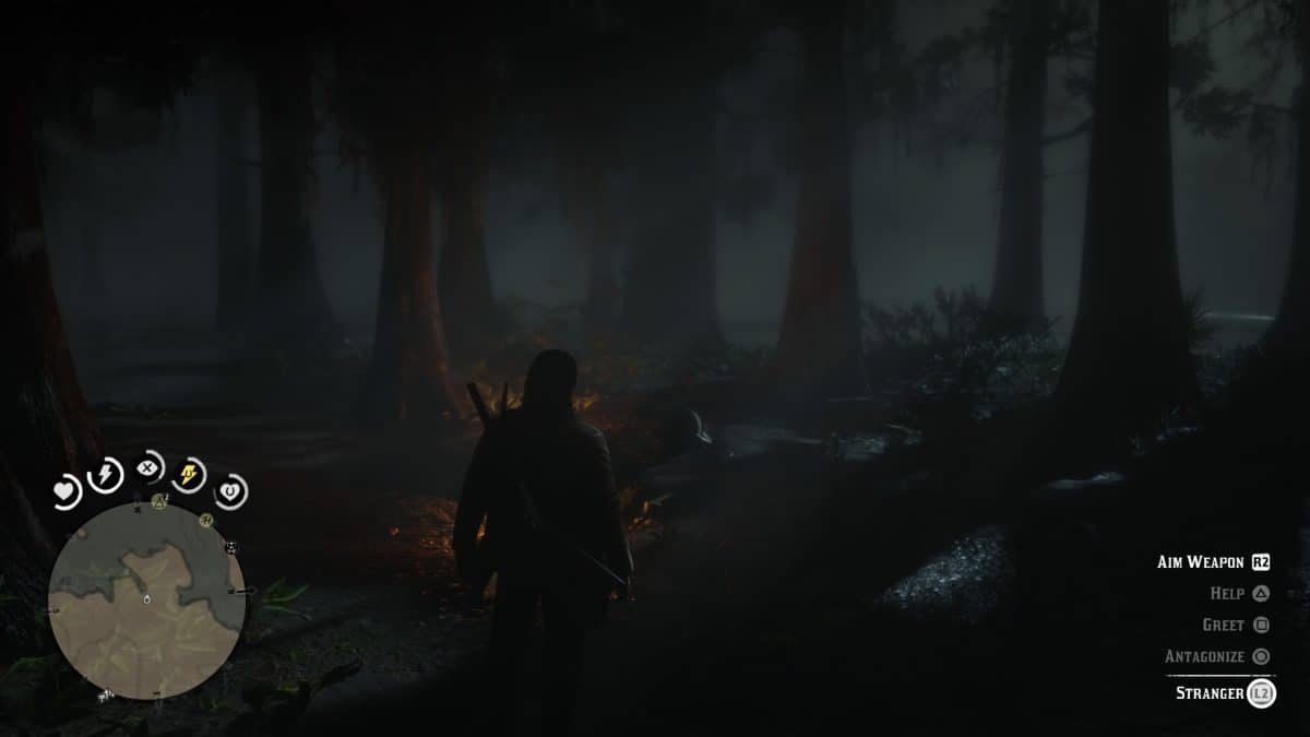 Red Dead Redemption 2 A Fine Night For It stranger mission