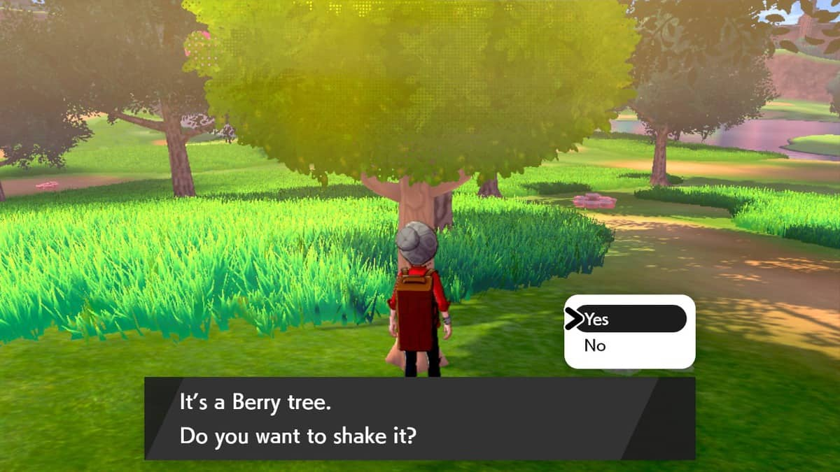 Pokemon Sword and Shield Berries, Berry Farming Guide