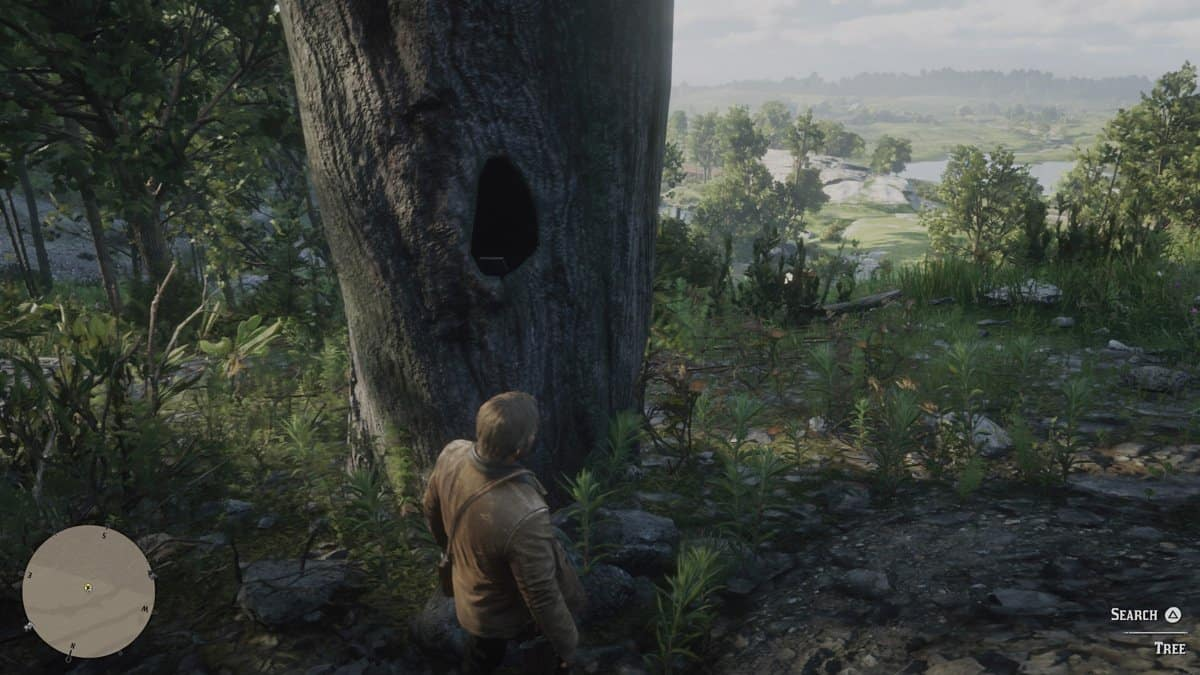 Red Dead Redemption 2 Chicks Treasure Map