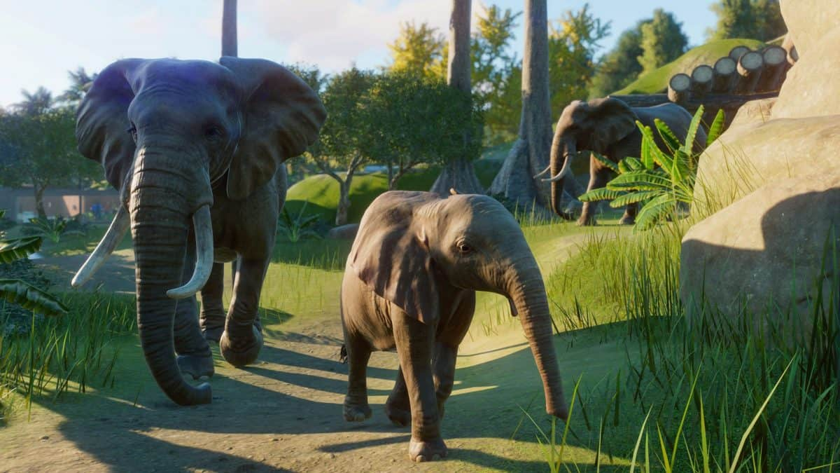 Planet Zoo Tips: Animal Care, Donations