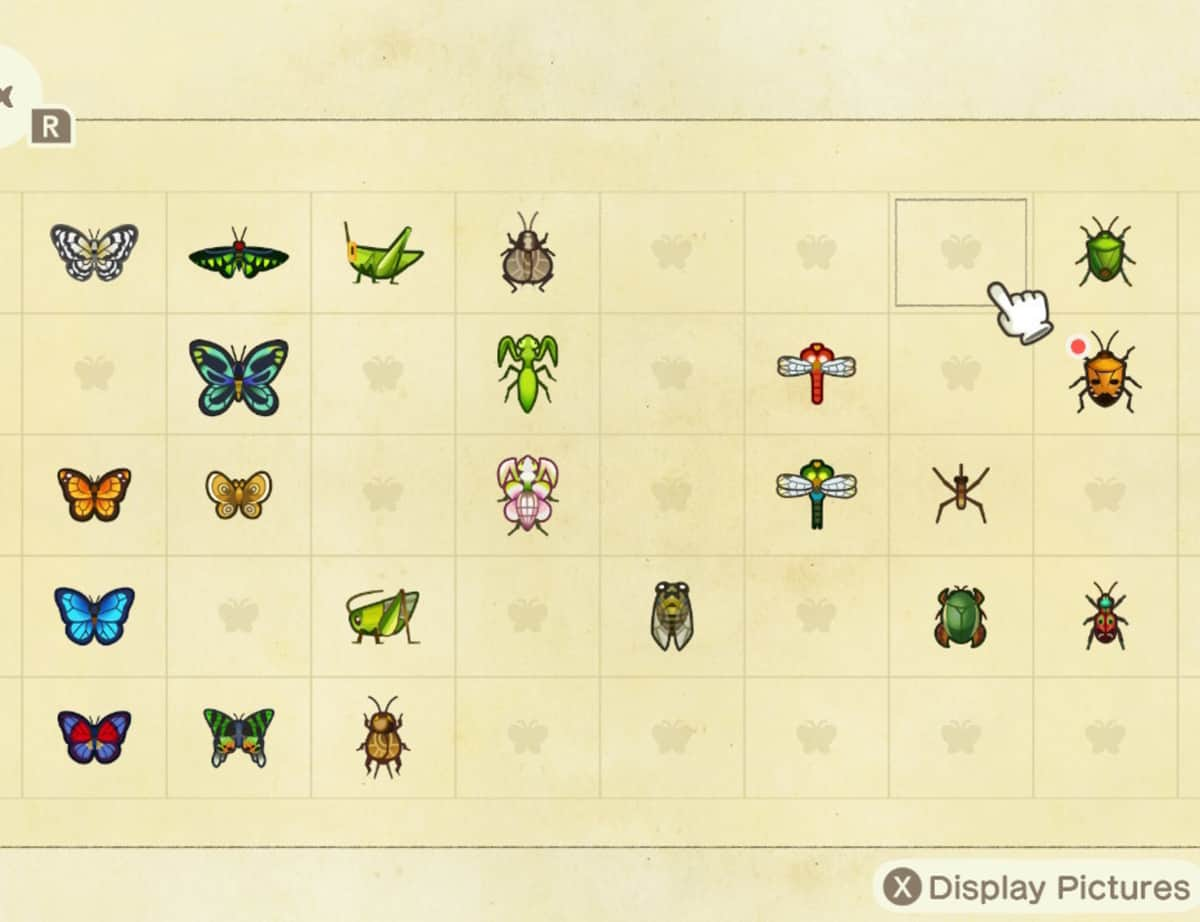 Animal Crossing New Horizons Bugs Guide