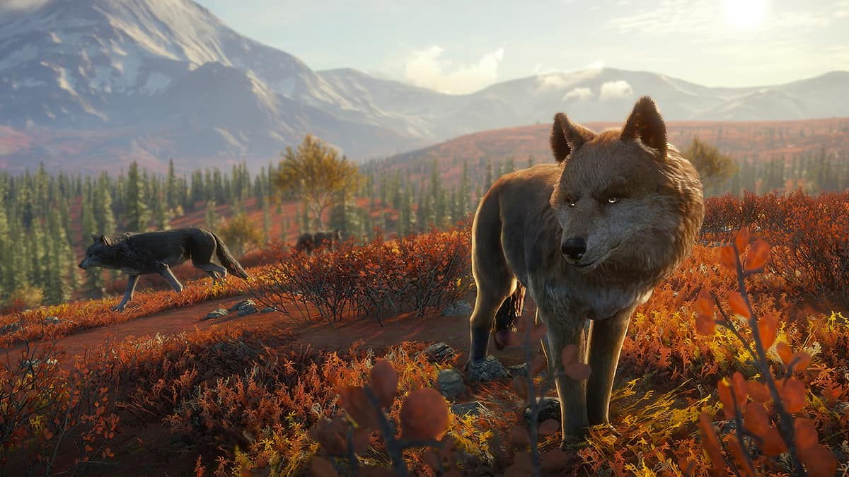 Interview: theHunter: Call Of The Wild Here To Stay, No Plans For A New Entry