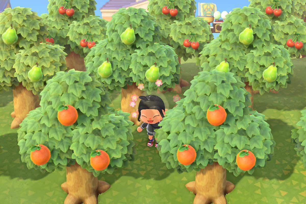 Animal Crossing New Horizons Trees Guide