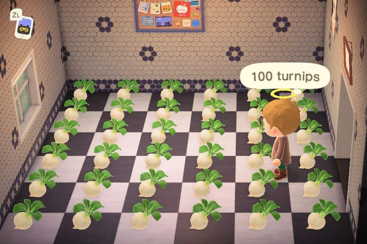 How to Buy and Sell Turnips in Animal Crossing New Horizons