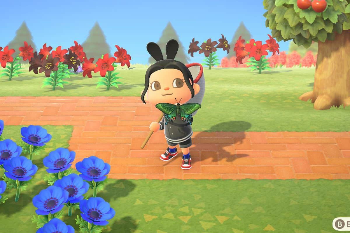 How to Catch Miyama Stag in Animal Crossing New Horizons