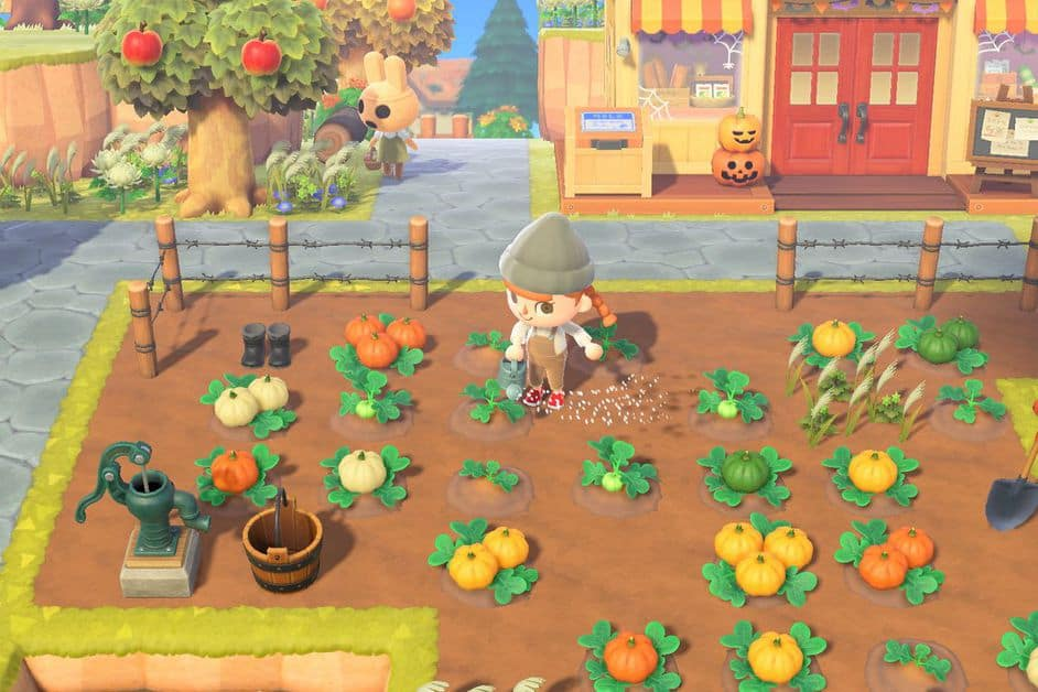Animal Crossing New Horizons Halloween Pumpkin Farming