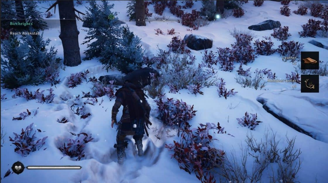 How to Find Reindeer Antlers for A Mild Hunt in Assassin's Creed Valhalla