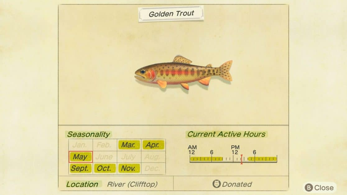 How to Catch the Rare Golden Trout in Animal Crossing New Horizons