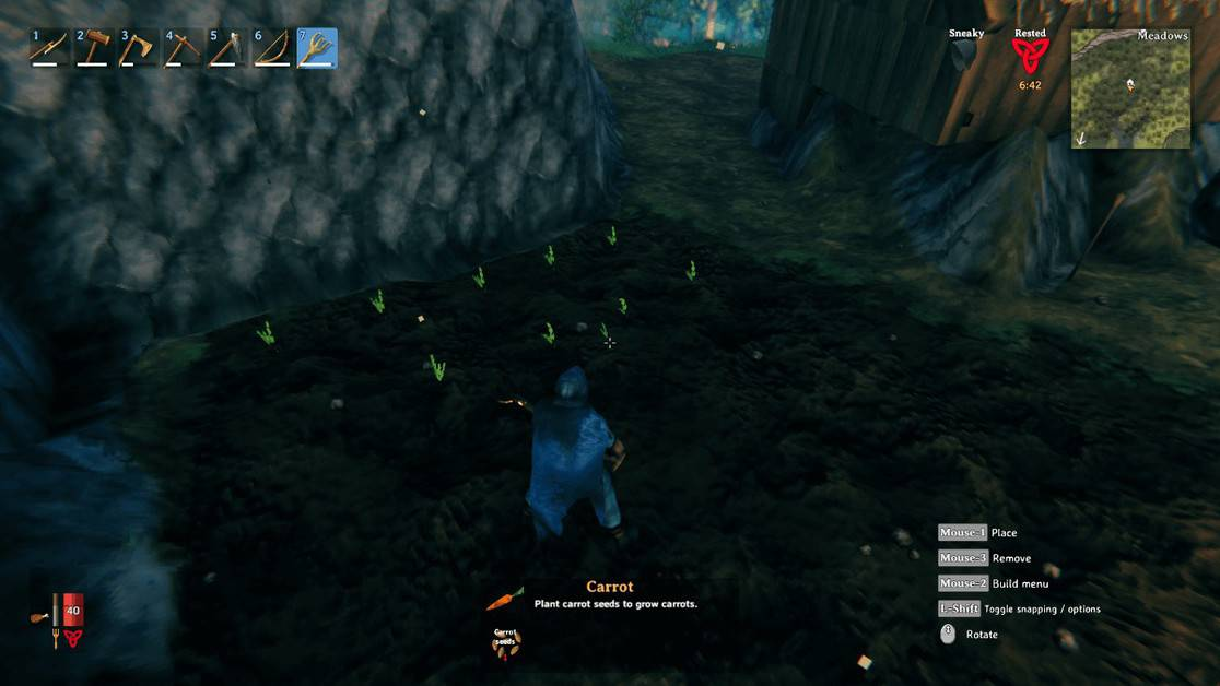 How to Plant Seeds in Valheim