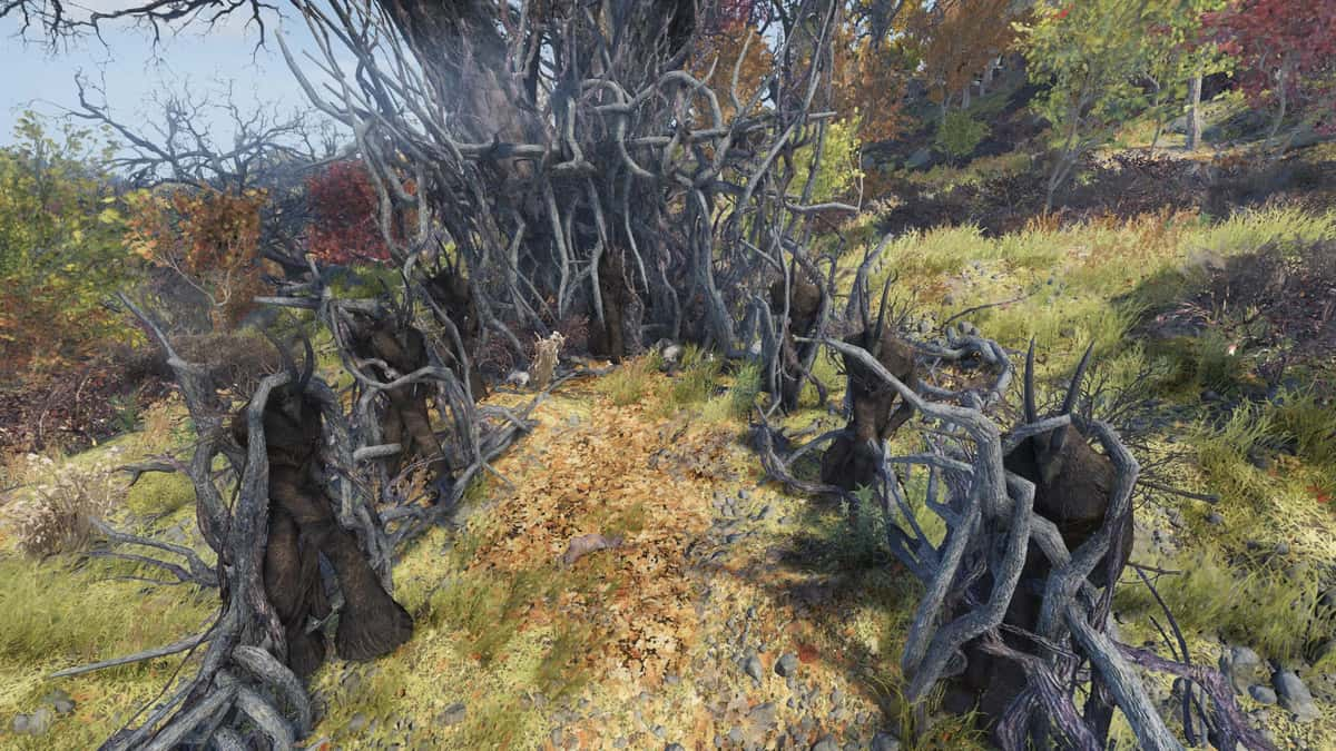 Fallout 76 Cultist Locations Guide